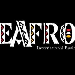 feafro-2015-estreita-os-lacos-entre-a-africa-e-o-brasil